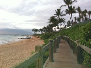 2012 Jan hawaii